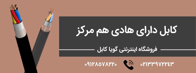 کابل دارای هادی هم مرکز